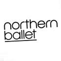 Northern Ballet Purchase Dual Layer Acoustic Shields