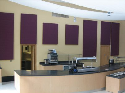 Plain acoustic panels on walls to resolve noise problems